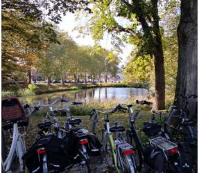 Últimos días en Holanda